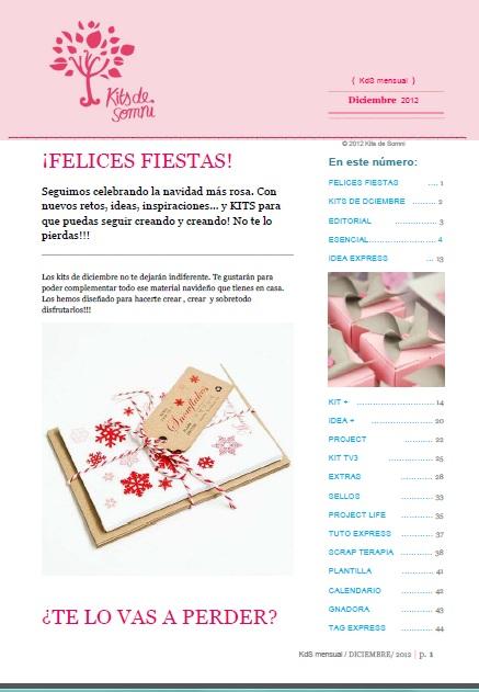 Portada revista diciembre 2012